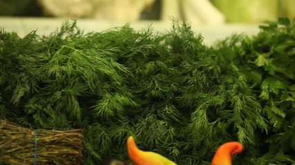 parsley and dill in a store. pan slide