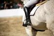 Equestrian Sports - 82279517