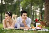 Silent couple at the picnic