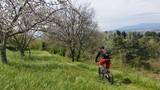 In bicicletta nella natura