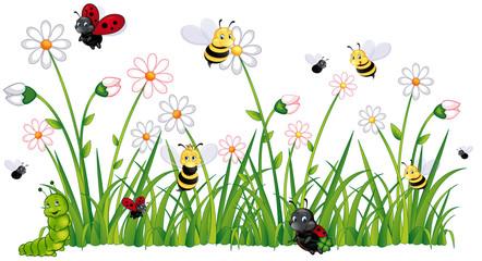 Insekten auf einer Blumenwiese