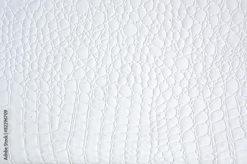 white texture - 82296709