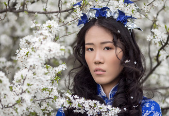 cherry blossoms - Tender Asian girl in Ao Dai
