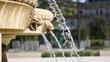Fontaine tête de lion