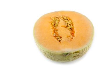 sun lady cantaloupe melon