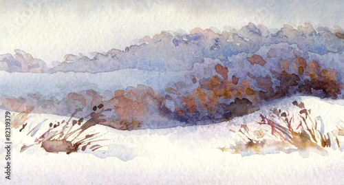 Watercolor winter landscape. Snowy field with dry shrubs © Marina