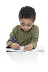 Cute Young Schoolboy Doing Homework