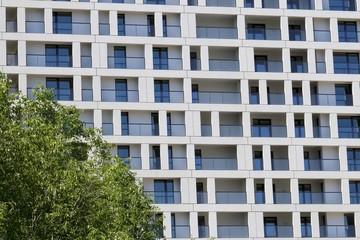 Fassade geometrisch modern und Baumkrone