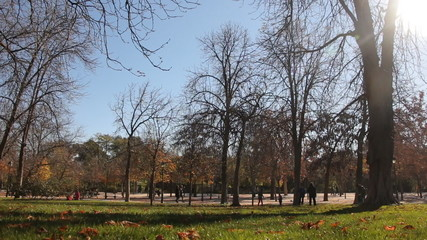 People spending their sunny autumn weekend in the park