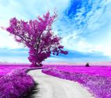 Fototapety Paisaje surrealista. Arbol y camino entre los campos