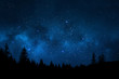 Night sky with trees - 82334123