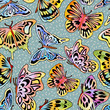Watercolor_Butterfly_Pattern