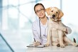 Veterinarian. Vet using technology with a little dog - isolated - 82341558