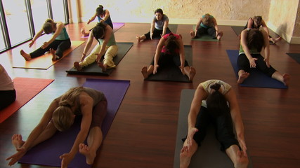 Front view of a women's yoga class