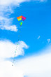 Colorful kite flying in the wind background blue sky - 82346923