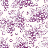 Fototapety background with purple currant