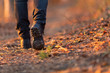 Closeup of woman legs hiking in nature at sunset. - 82364363
