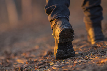 Closeup of woman legs hiking in nature at sunset.
