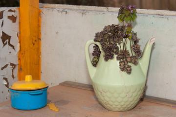 Kid's still life composition with broken vase