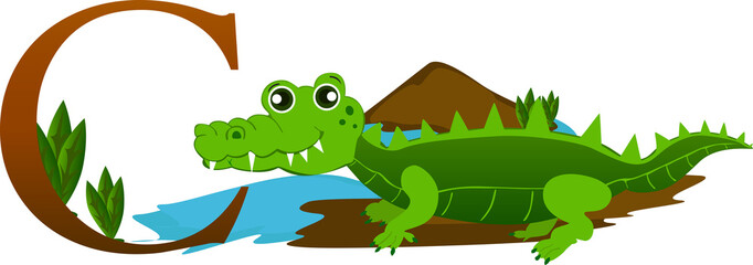 Illustrated alphabet letter c and crocodil