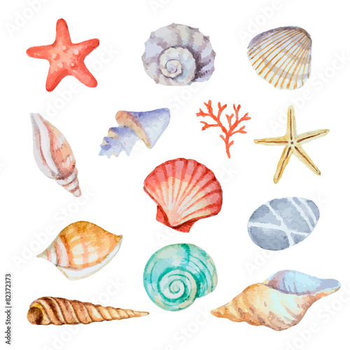 Fototapeta Watercolor set of seashells