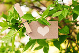nature greeting card background - LOVE