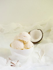 Coconut ice cream  homemade
