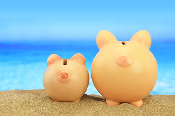 Two piggy banks on the beach looking to the sea