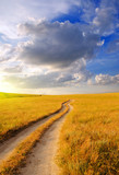 Dirt road in the steppe