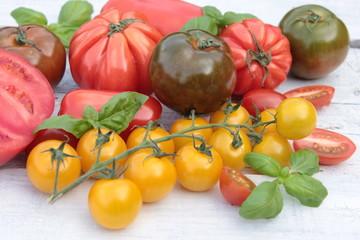 alte verschiedene tomaten sorten