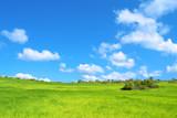 Fototapety Bella prateria verde con cielo azzurro e nuvole - pianeta verde