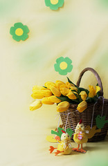 Yellow tulips in basket and chicken