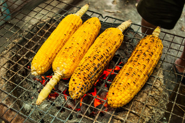 Grilled corn vegetables grilled corn on the hot stove.