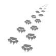 Footprints of a big cat3