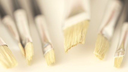 Paint brushes on white background with camera movement
