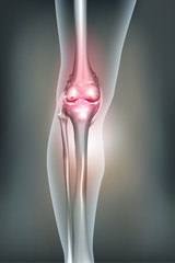 Human leg and knee joint anatomy, abstract background