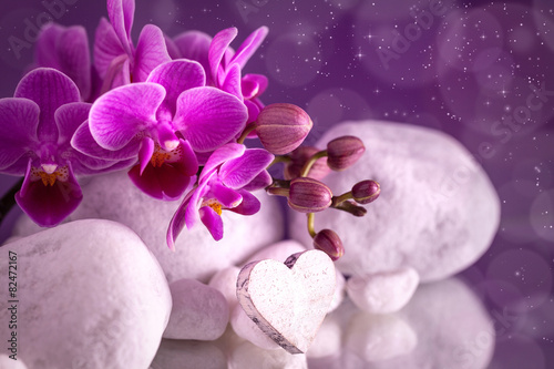 In de dag Water planten Orchidea love