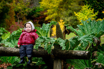 Cute smiling kid sitting on the log in the autumn garden