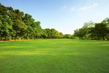 Fototapety beautiful morning light in public park with green grass field an