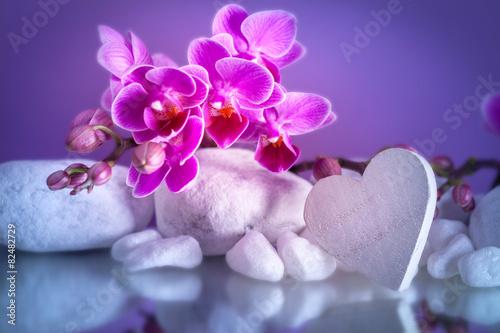In de dag Water planten San Valentino