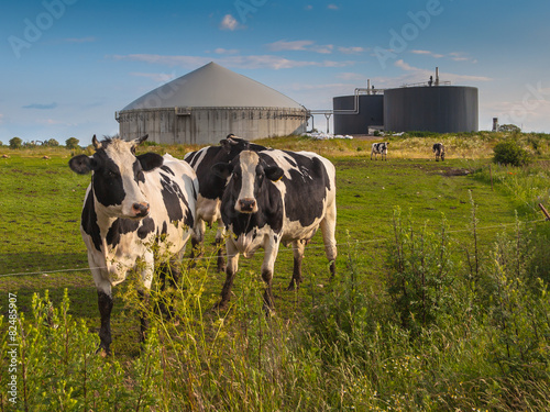 Staande foto Industrial geb. Biogas plant on a farm