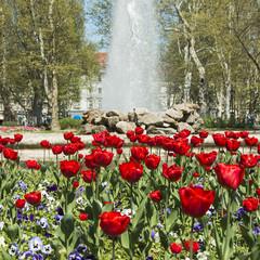 Tulips and music pavilion in Zrinjevac park in Zagreb