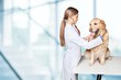 Veterinarian. Doctor examining a cute dog at the vet - 82487700