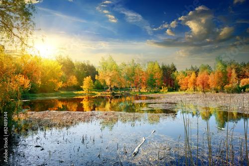 Leinwandbild Motiv Yellow autumn on river