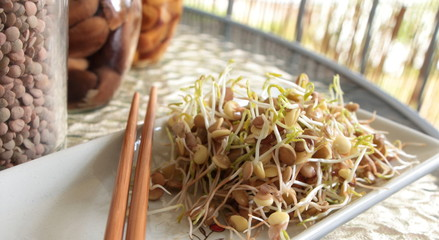 Lentil sprouts salad on plate with chopsticks