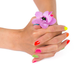 Woman hands with manicure after spa holding flower
