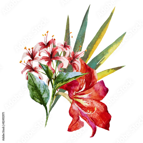 Watercolor flowers - 82492971