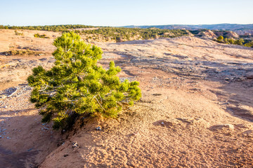 Navajo National Monument canyons