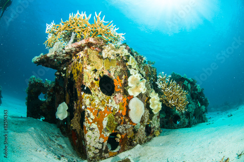 Foto op Canvas Duiken scuba diving diver shipwreck kapoposang indonesia underwater