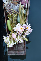 water lily in the boat on river.